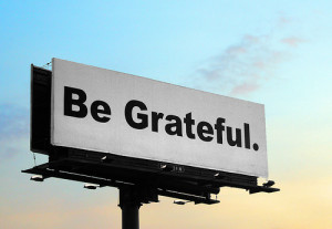 grateful_snoshuu
